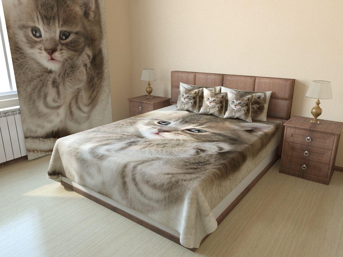 Фотопокрывало стёганое Дымчатный котёнок (1) от Рим Декор